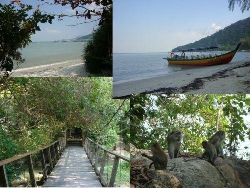 Monkey Beach, Penang