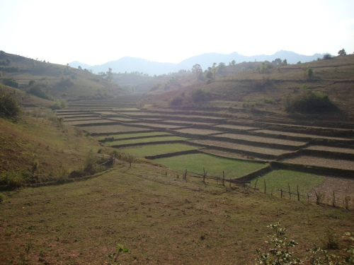 Typical view on the trek from Kalaw to Inle Lake.