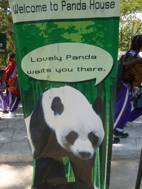 Thanks Lovely Panda