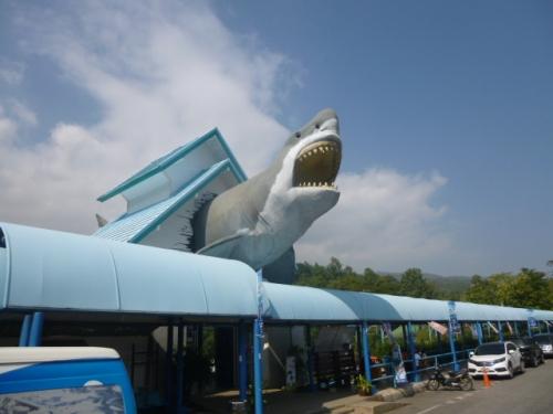 Gah!  Sharks!