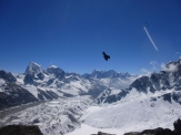 Himalayan Flight