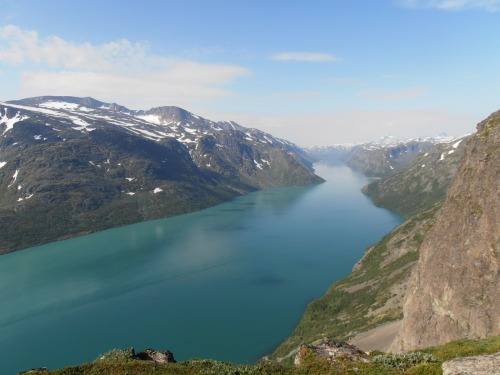 Pining for the fjords