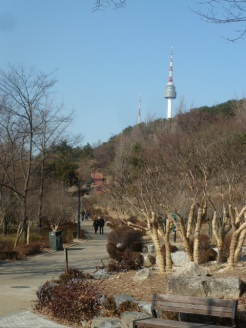 Namsan from the base